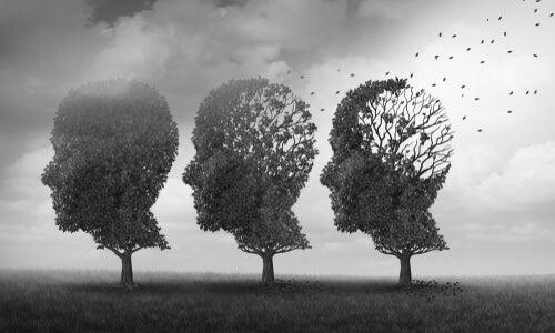 Árboles con forma de cabeza de una persona
