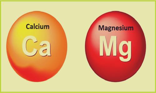 nutrientes representando cómo la deficiencia de calcio y magnesio