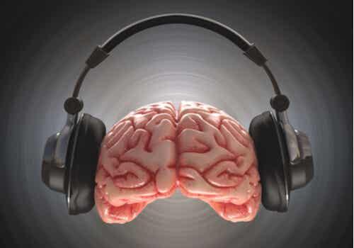 Escucha dicótica: definición y características