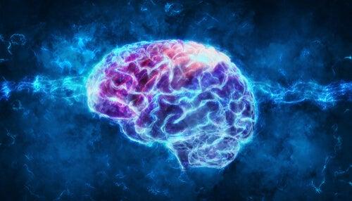 Cerebro iluminado para representar la psicofisiología