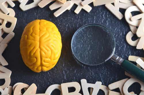 ¿Qué es la psicología experimental?