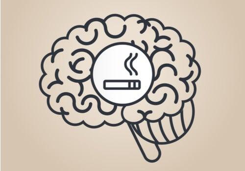 Imagen de un cerebro con cigarro humeando