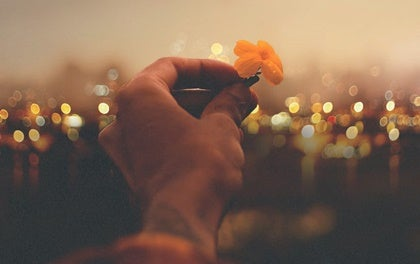 mano con flor simbolizando cómo vivir en plenitud