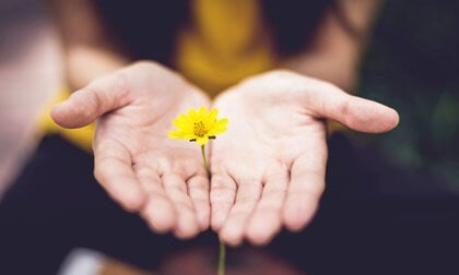 5 frases para empezar nuevas etapas con esperanza