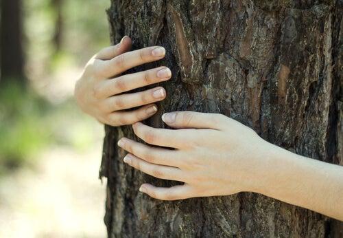 Mujer abrazada a un árbol