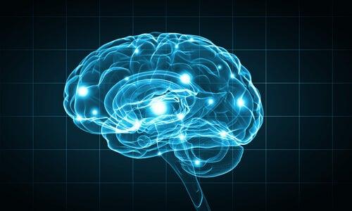 Cerebro iluminado por luz azul