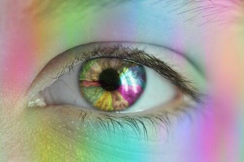 retina conectada con el núcleo supraquiasmático
