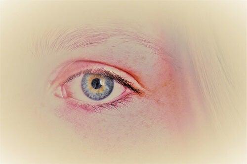 ojo simbolizando los estilos de apego y la memoria emocional