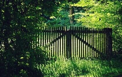 muro para simbolizar la necesidad de decir hasta aquí he llegado