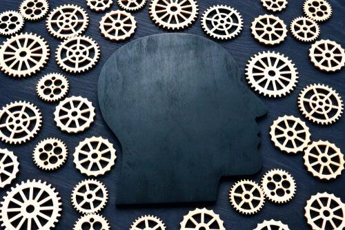 Cociente intelectual: características y evolución