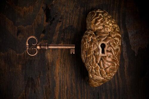 Cerebro cerradura