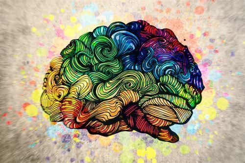 El efecto del arte en nuestro cerebro