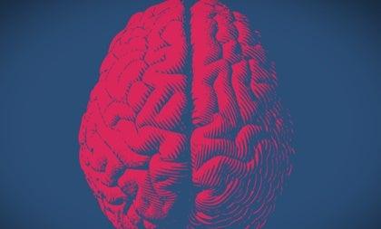 Cerebro moral