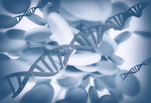 Epigenética: ¿se pueden heredar las tragedias?
