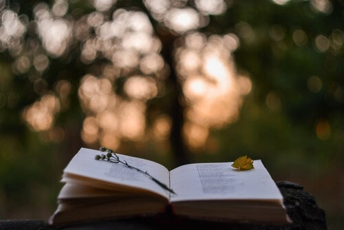 Libro con poesías
