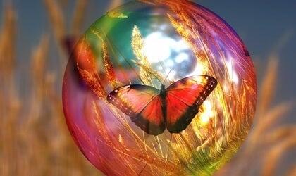 La sensibilidad es signo de fortaleza, no de debilidad
