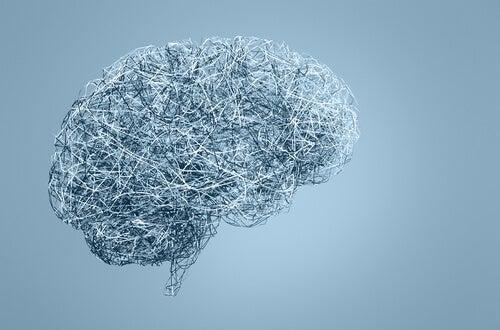 Cerebro con funda azul