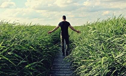 chico entre campo de maíz representando la ley del mínimo esfuerzo
