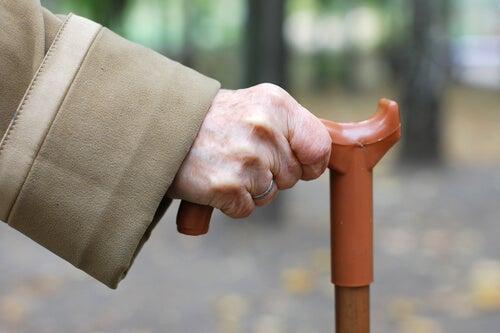 Cane Fu: la nueva disciplina marcial para las personas mayores