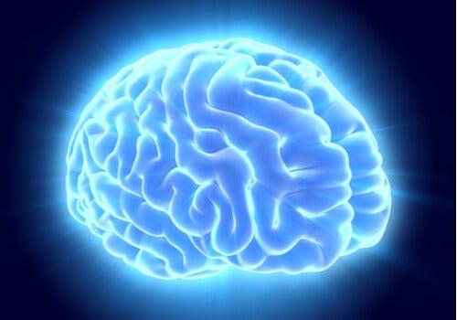 Nuestro cerebro nos engaña: el experimento de Persinger