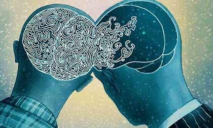 El giro supramarginal derecho, el área de la empatía