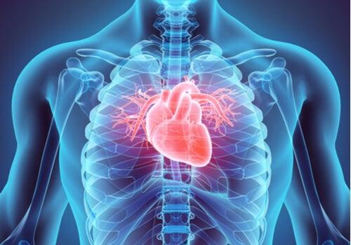 Corazón en el pecho