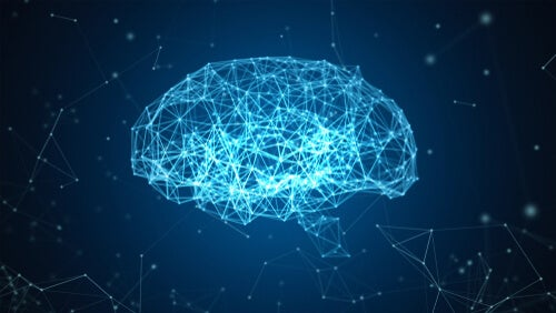El proyecto Blue Brain