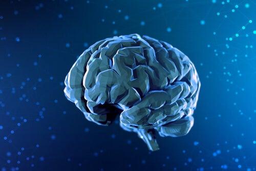 cual es la relacion entre mente y cerebro