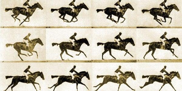 caballos representando el fenómeno phi