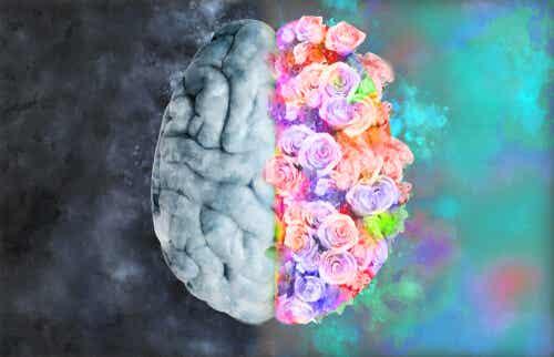 Neuroestética: ciencia para entender el arte