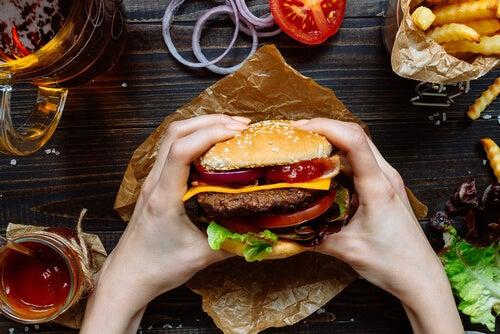 Efectos de la comida basura sobre el cerebro