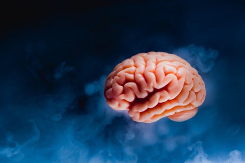 Cerebro sobre fondo azul oscuro
