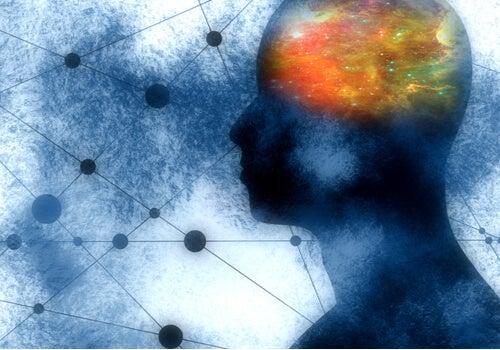 3 llamativas funciones de las neuronas espejo