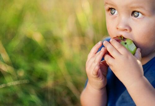 Niño comiendo una manzana
