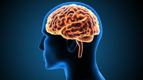 Víctor Leborgne, un caso clínico que cambió las neurociencias