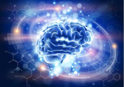 Encefalinas, neurotransmisores que combaten el dolor