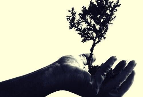 Mano con árbol