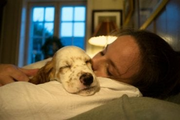¿Dormir con nuestras mascotas proporciona seguridad y bienestar?