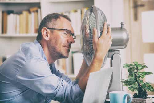 ¿Qué es el estrés térmico?