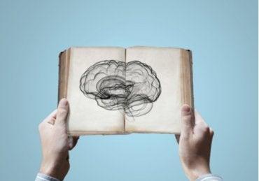 ¿Se puede heredar el conocimiento?