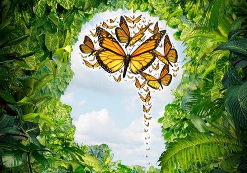La ecpatía como estrategia para cuidar de tu salud emocional
