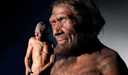 Los neandertales tenían sentido de la compasión y cuidaban de los suyos
