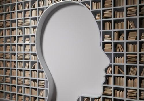 Diferencias entre el DSM-5 y el CIE-11