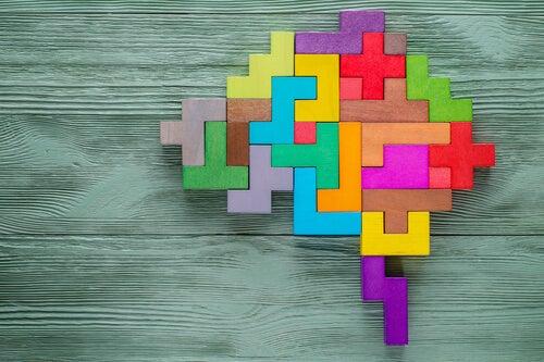 Puzzle de un cerebro de colores
