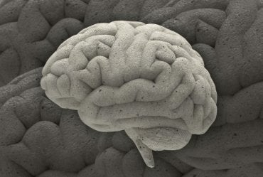 Tres fascinantes casos de la neurociencia