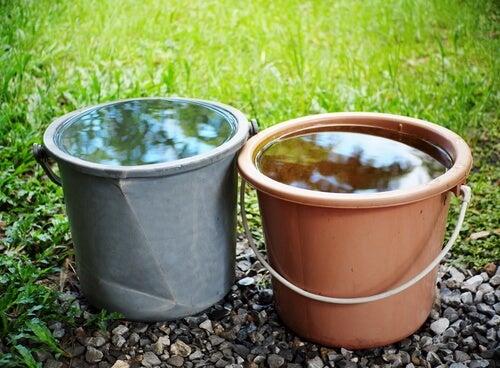 Dos cubos de agua