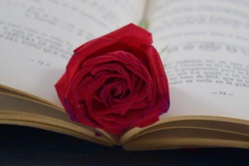 Rosa sobre un libro