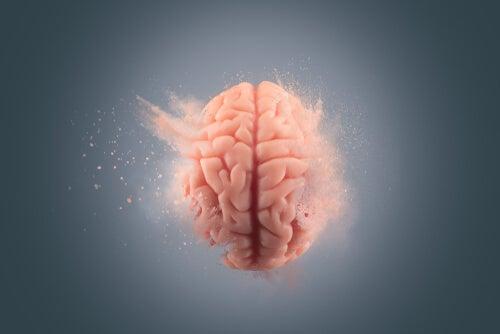 Los efectos de la cocaína en el cerebro