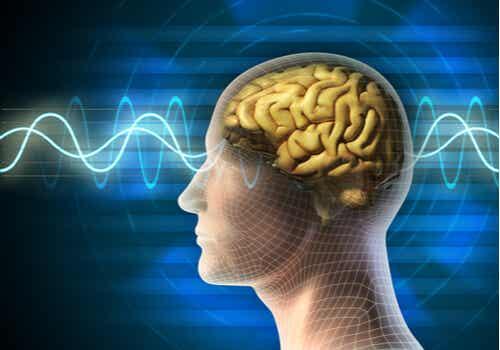 Cerebro con ondas electricas
