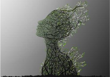 Test de psicología del árbol